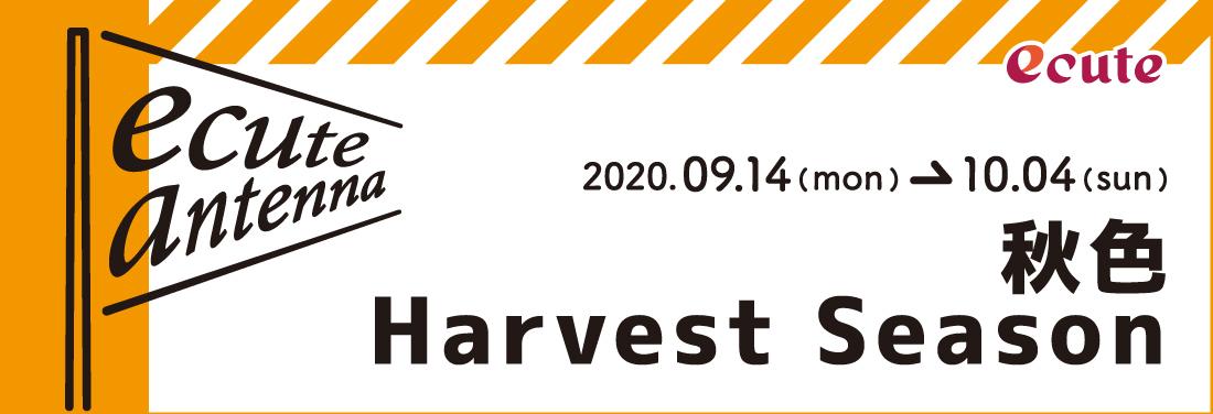 秋色Harvest Season