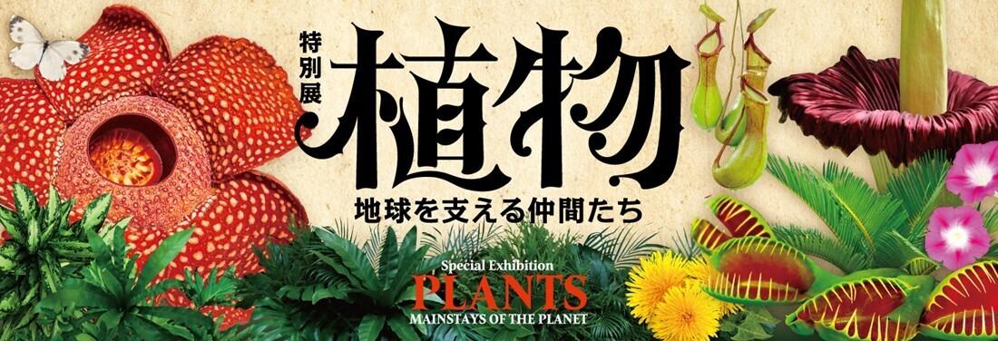 特別展「植物」オリジナルステッカープレゼント!!